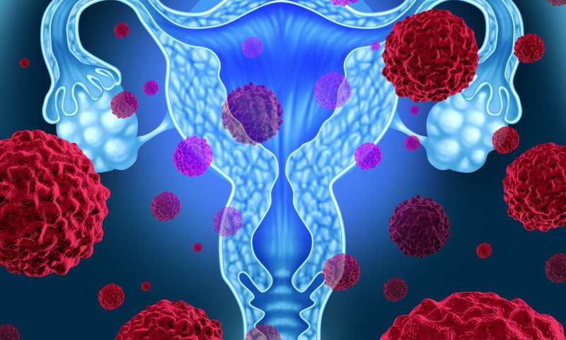 Cervical cancer: new radiotherapy technique prolongs survival