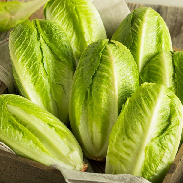 A link between an E. coli outbreak and recalled romaine lettuce.