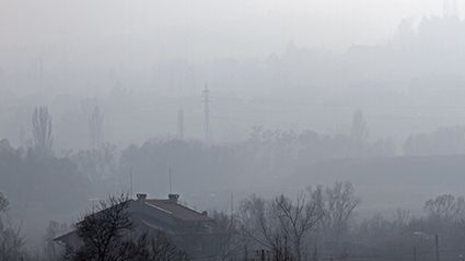 News Picture: Air Pollution Takes a Toll on Your Kidneys