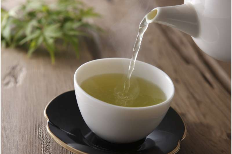 Green tea compound aids p53, 'guardian of the genome' and tumor suppressor