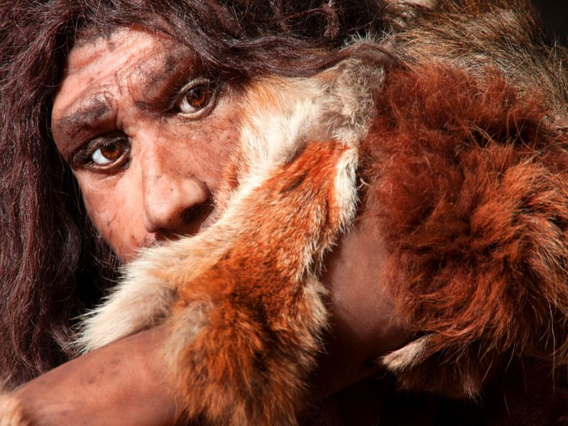 News Picture: Neanderthal Poop Provides Clues to Modern Humans' 'Microbiome'