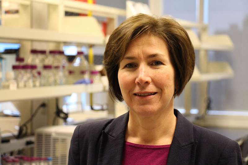 Promising new approach to stop growth of brain cancer cells